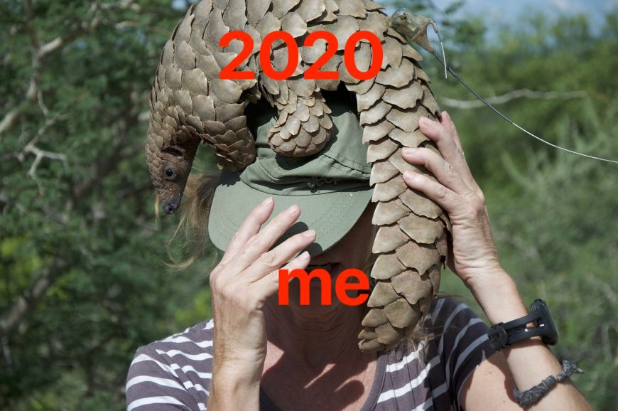 2020_summary